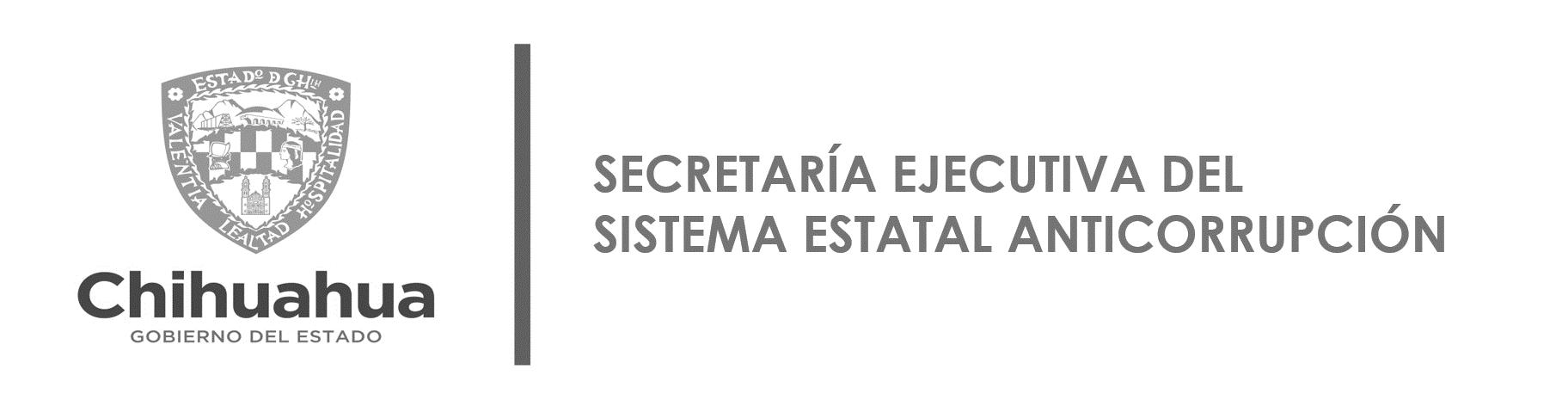 Secretaría Ejecutiva del Sistema Estatal Anticorrupción